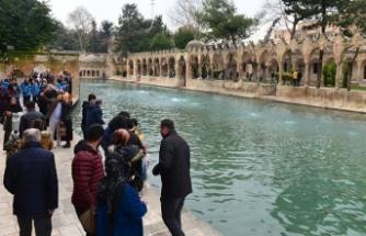 Güneydoğu Anadolu Bölgesi'ne turistlerin ilgisi arttı