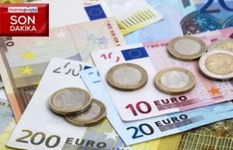 Aylık en yüksek reel getiri Euro'da oldu