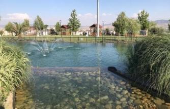 Süs havuzuna düşen çocuk boğuldu