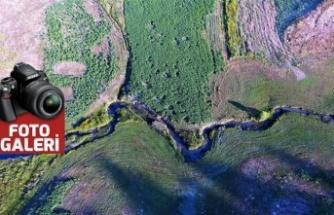 Karadeniz yaylalarını aratmayan görsel şölen