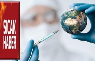 Covid-19 aşısı için çalışmalar sonuca yaklaşıyor