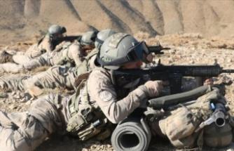 Terör örgütü PKK'nın izi Amanoslar'dan silindi