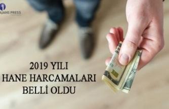 2019 yılı hane harcamaları belli oldu