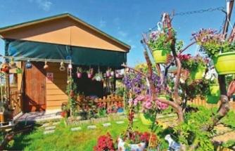Hobi bahçesi lüks değil ihtiyaçtır!