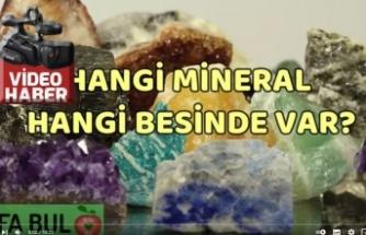Hangi mineral hangi besinde var?