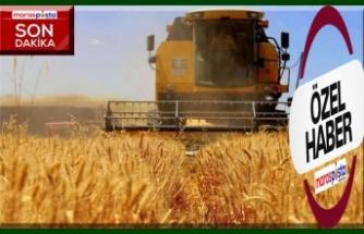 Tarım-GFE yıllık yüzde 15,35 arttı