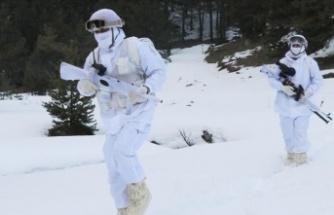 Güvenlik güçleri geçen ay 126 PKK'lı teröristi etkisiz hale getirdi