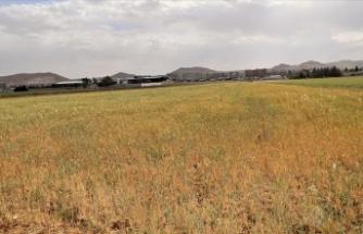 2021 su/tarım yılı 7 aylık yağışları yüzde 24 azaldı