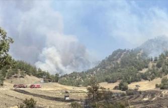 Bulutoğlu'nda ki orman yangını kontrol altına alındı