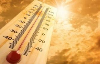 'Eyyam-ı bahur' sıcaklarının etkisine dikkat!
