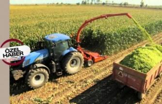 Haziran 2021: Tarım Ürünleri Üretici Fiyat Endeksi