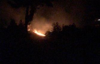 Kazmabağları'nda 3 dönüm orman yandı