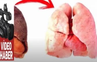 Bir fincan ciğerleri temizler