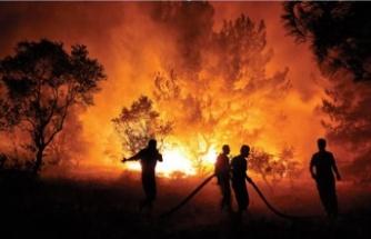 Kahramanmaraş'ta yangın var mı?