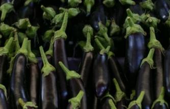 Temmuzda fiyatı en çok düşen 'patlıcan' oldu