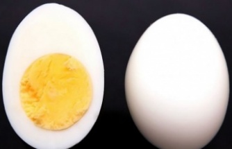 Her sabah bir adet yumurta yediğinizde bağışıklığı çelik gibi yapıyor
