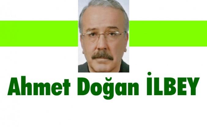 Çok kimlikli toplum değil, tek kimlikli Türk milletiyiz
