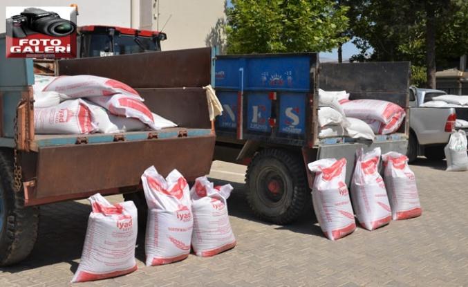 Pazarcık'ta kırmızı mercimek tohumu dağıtımı gerçekleştirildi
