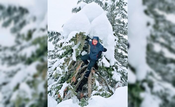 Ağaçların üzerine yağan karı temizleyerek doğaya sahip çıkıyor